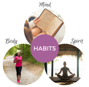 Body Mind and Spirit of Habits Book
